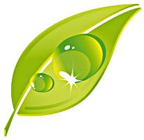 apfelgruen-logo-mittel